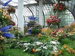 Palmengarten. Ботанический сад во Франкфурте